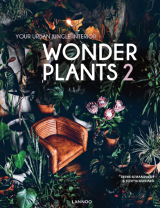 wonder_plants-231x300 Aktuality